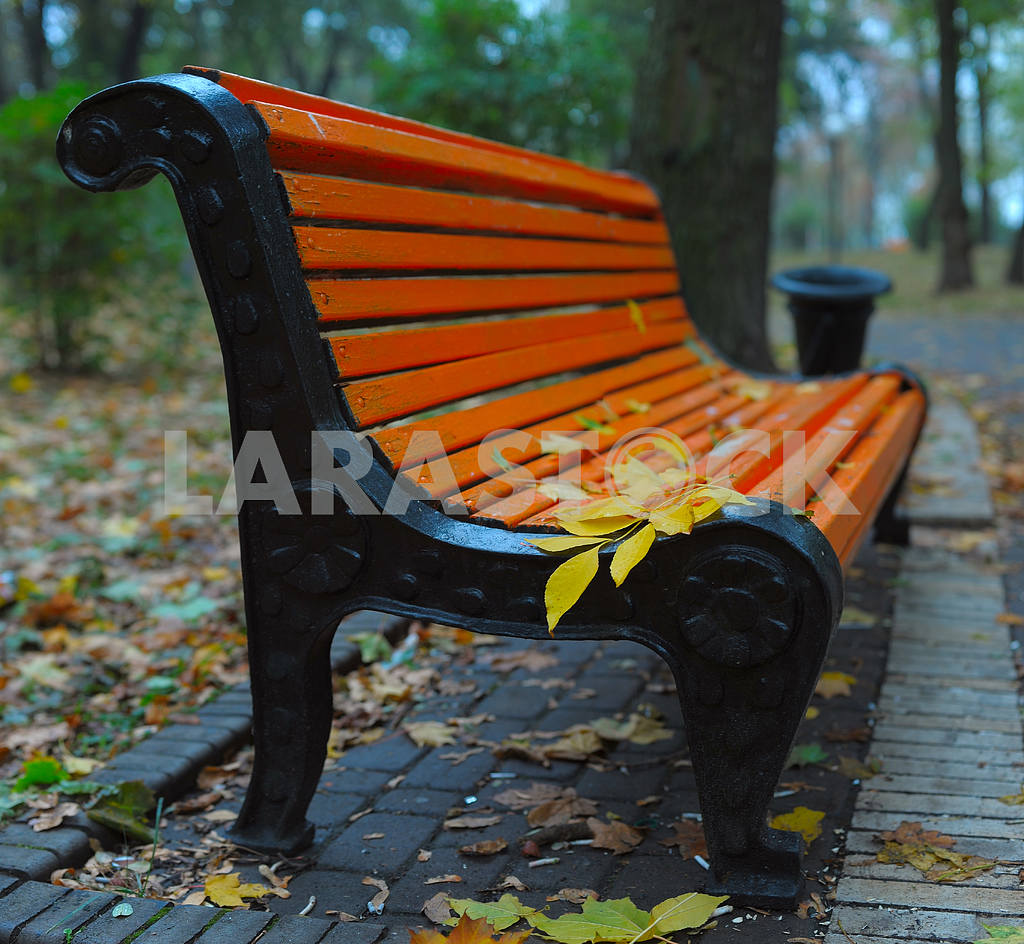 Benches in city park — Image 3884