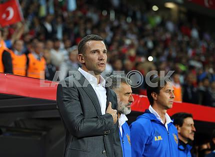 Андрей Шевченко во время матча Турция - Украина