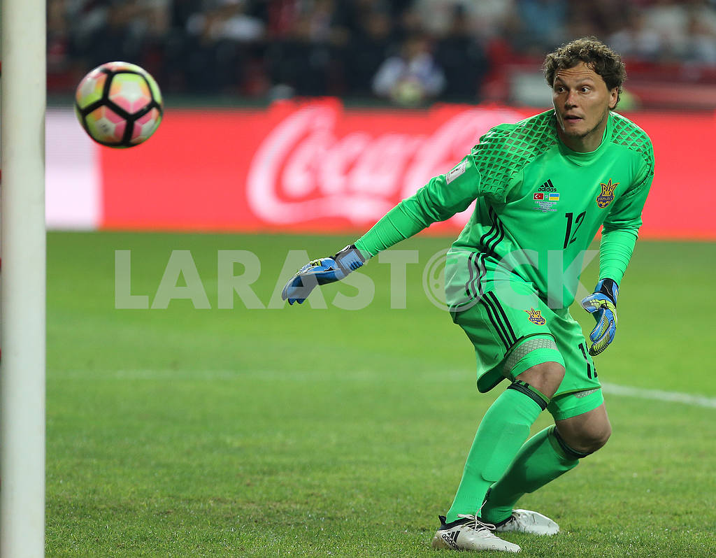 Andrey Pyatov during the match between Turkey and Ukraine — Image 38846