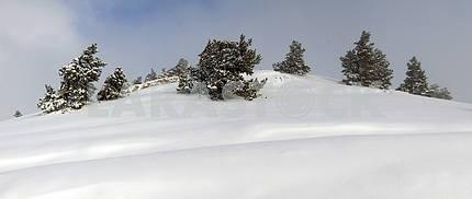 Плато панорама Ай-Петри зимой