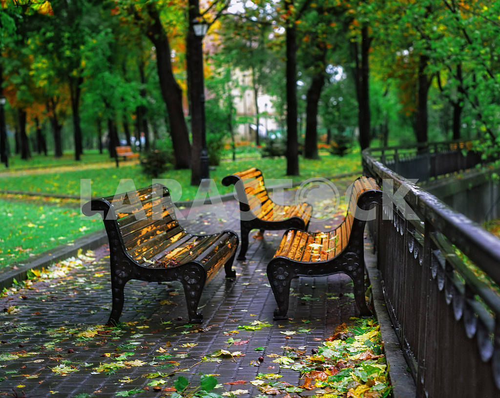 Autumn sheet on a bench in city park — Image 3956