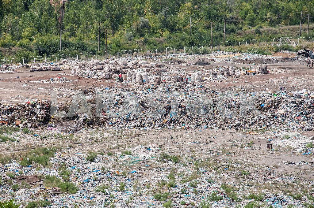 Куча мусора в отечественной свалки — Изображение 4105