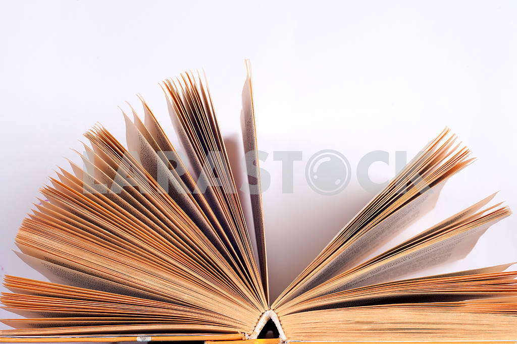 Open book on light table. Back to school. Copy space. — Image 41843