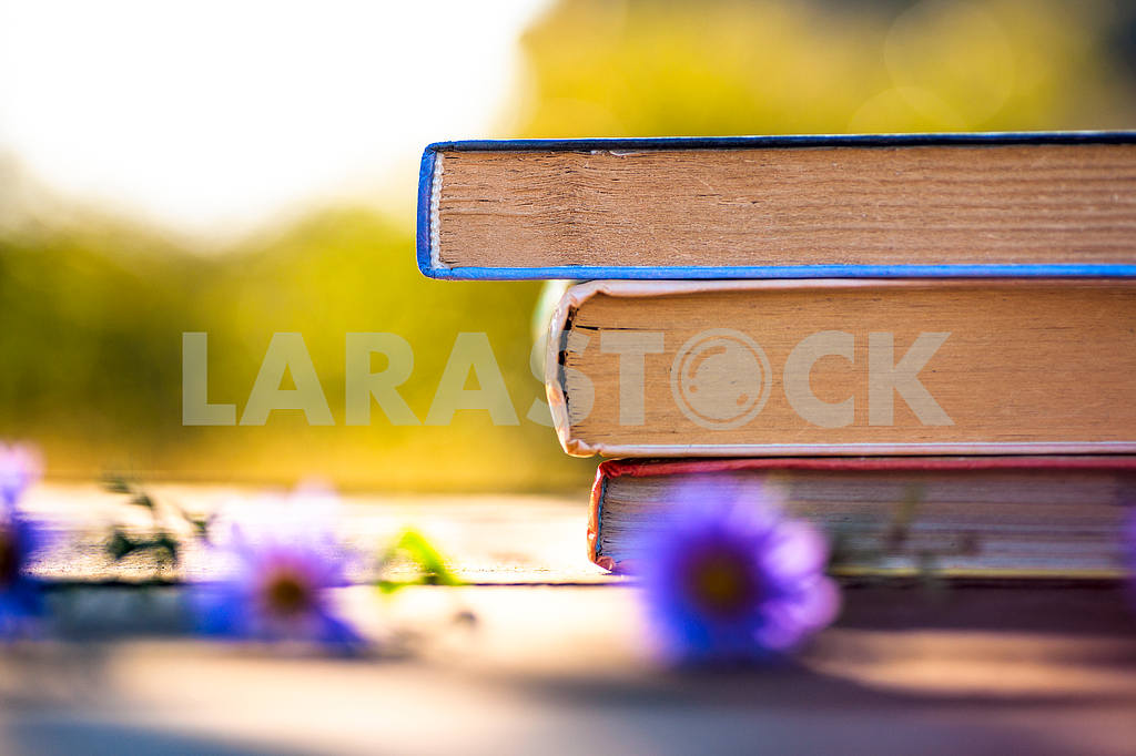 Books on natural background. — Image 41854
