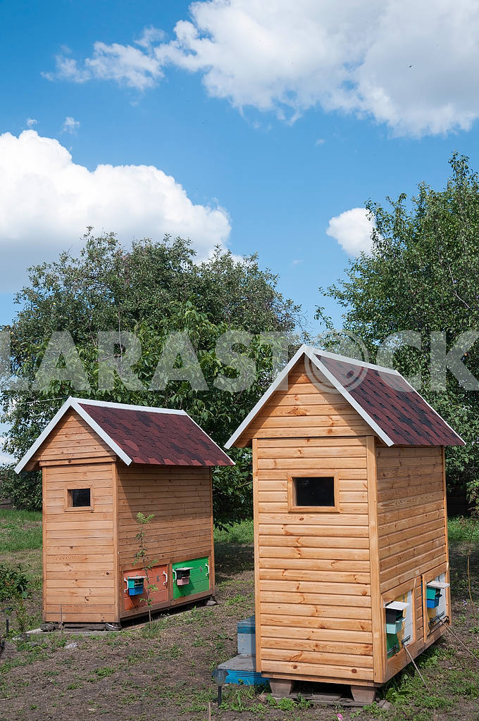 Single wooden house for apitherapy — Image 4200