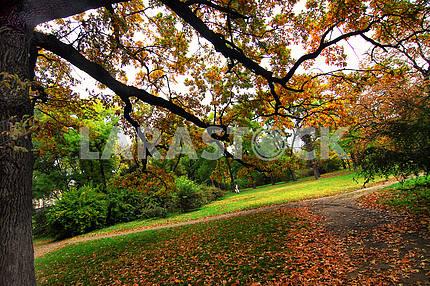 Autumn in Odessa.