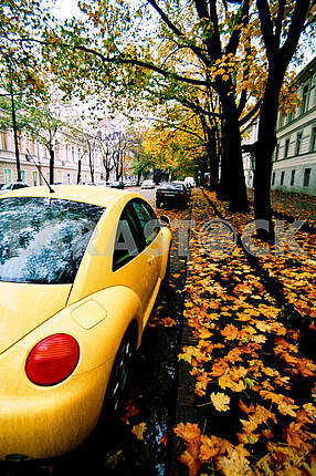 Yellow car and autumn leaves