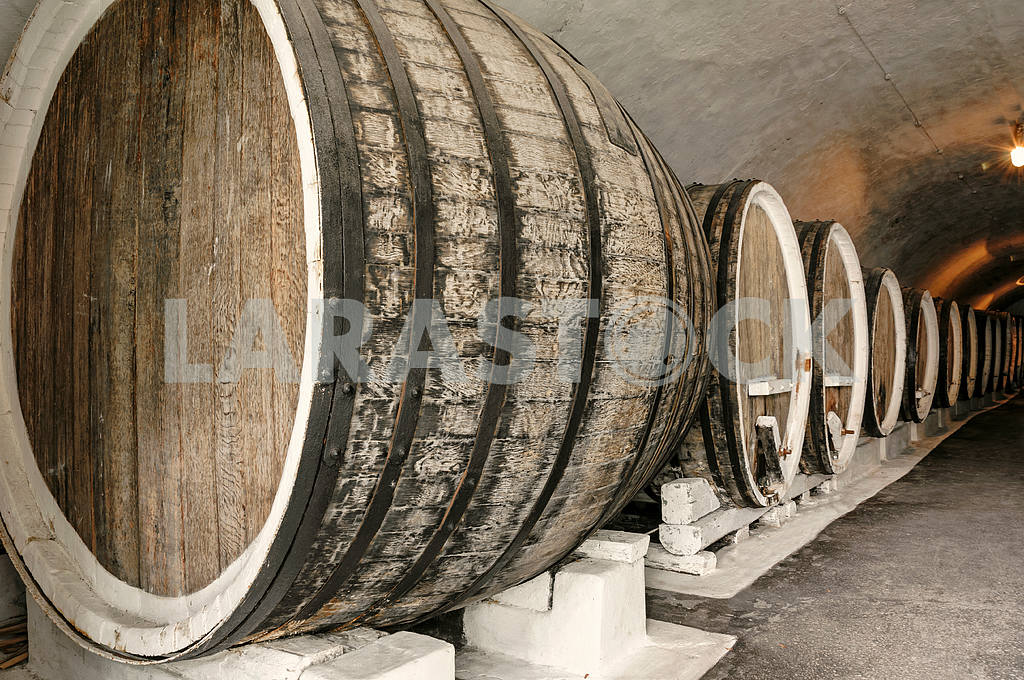 Wine cellar — Image 4244