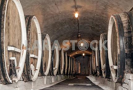 Cellar, wine barrels