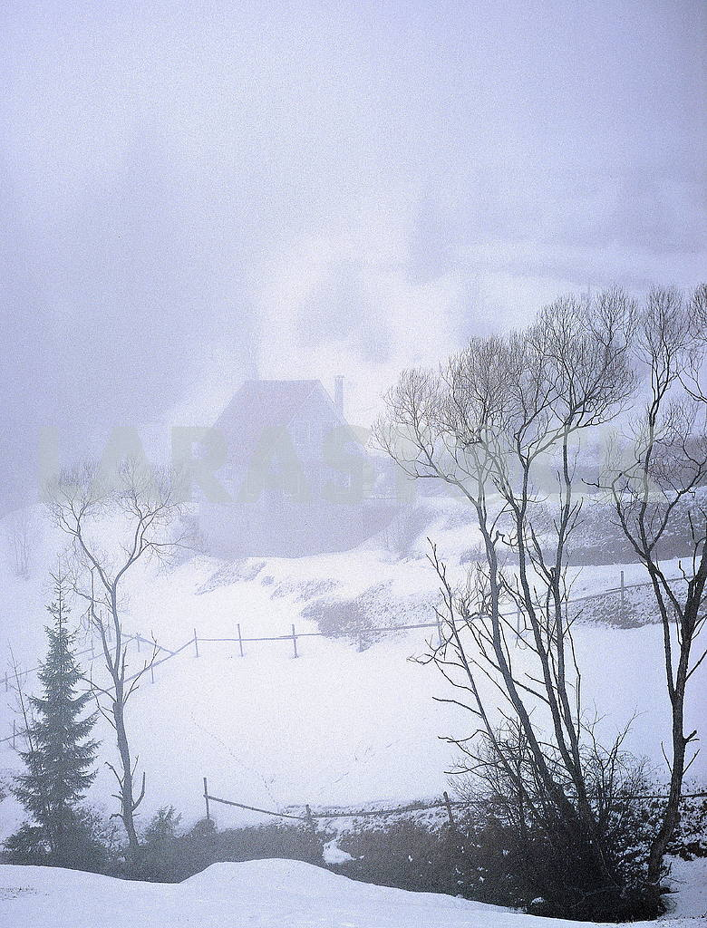House in the Fog — Image 46087