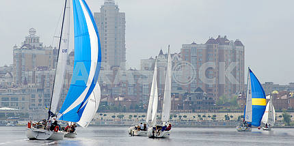 Sailing regatta on the Dnieper