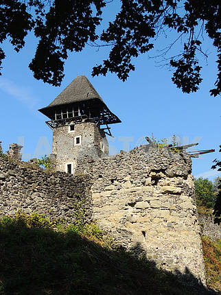 The ruins of the castle Nevitske