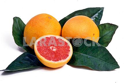 Grapefruits and green leaves