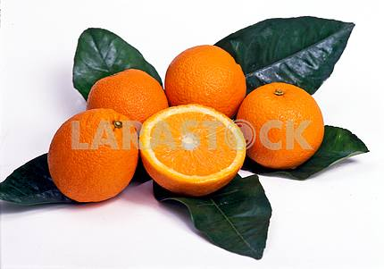 Oranges and green leaves