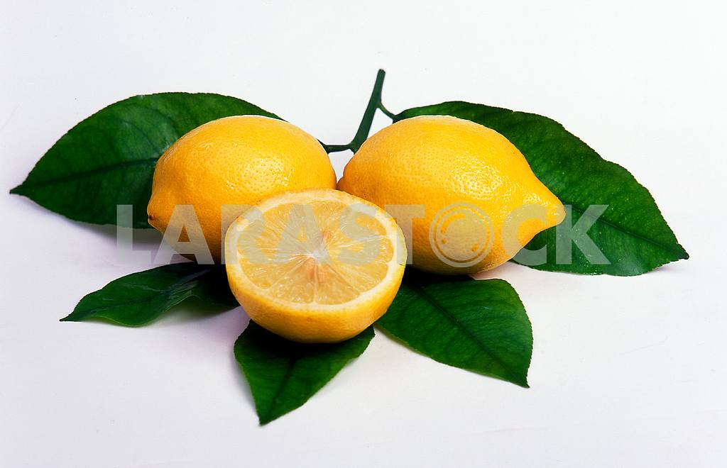 Lemons and green leaves — Image 46563