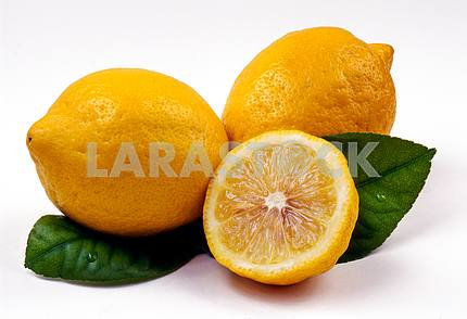 Lemons and green leaves