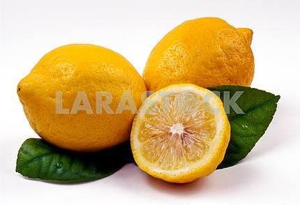 Lemons and green leaves