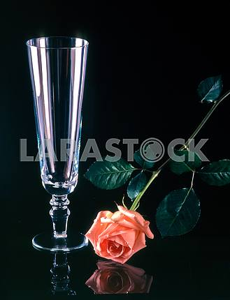 Glass and flower on a black background