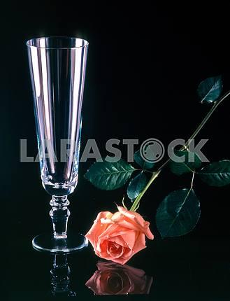 Бокал и цветок на черном фоне