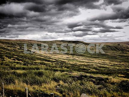 Атмосферная болотистая местность
