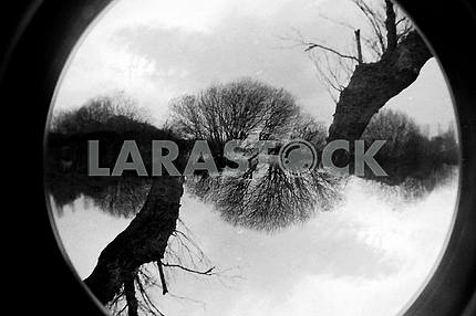 Fisheye Double Exposure Landscape