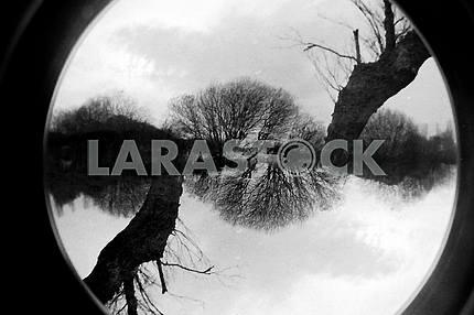 Fisheye Double Exposure Landscape