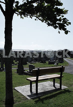 Graveyard Bench