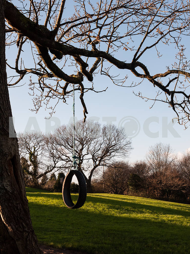Tire Swing — Image 47052
