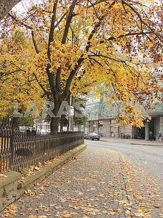 Autumn in Uzhgorod