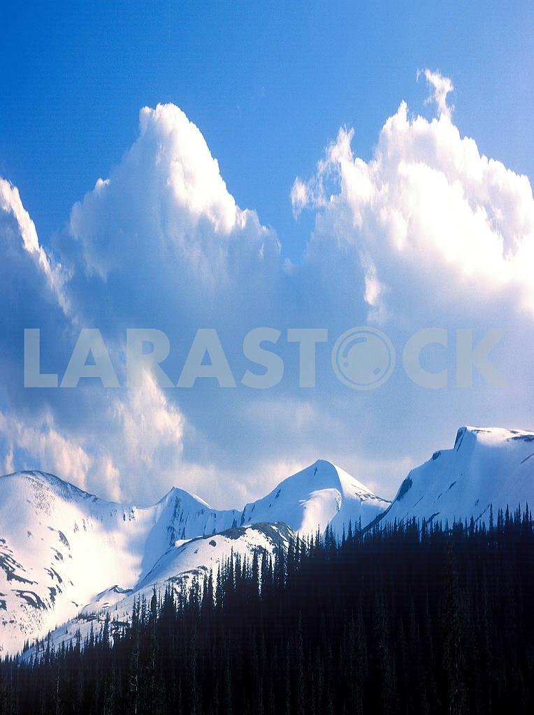 Гора Драгобрат — Изображение 47820