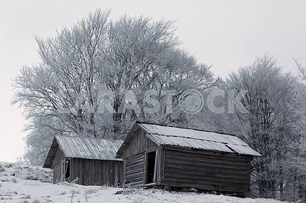 Зимний вид на деревянные домики пастухов. Рассвет. Деревья покрыты инеем. Карпаты. Украина.