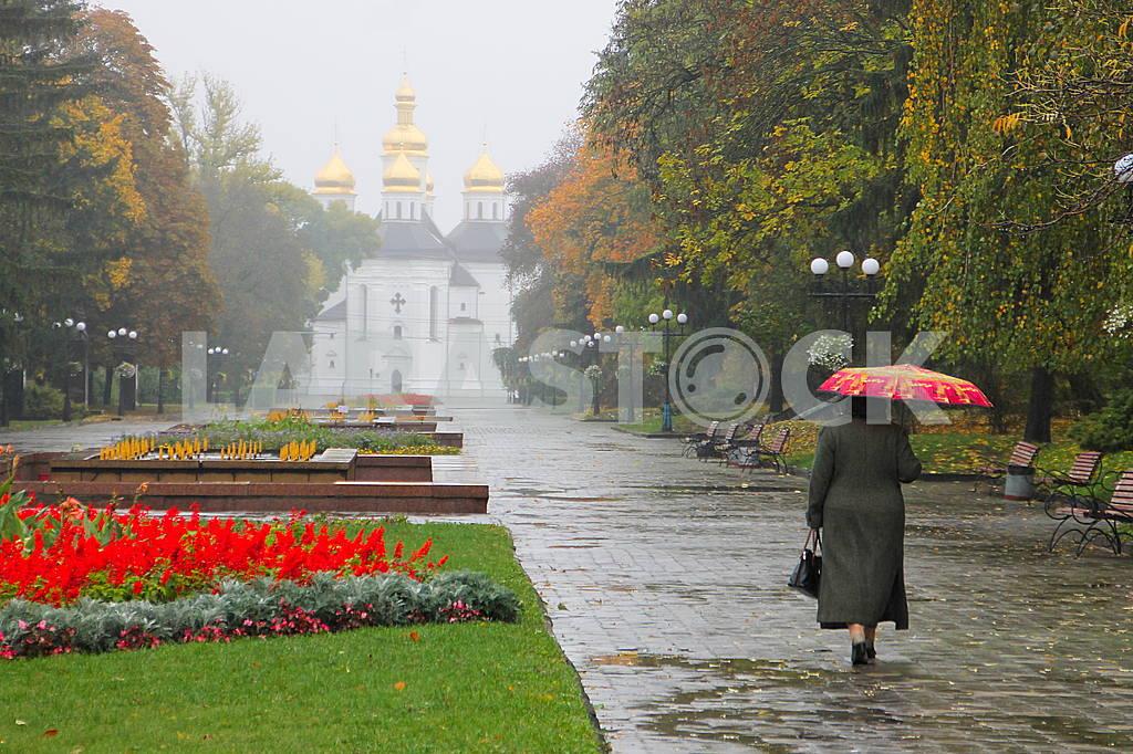 Autumn rain — Image 47950