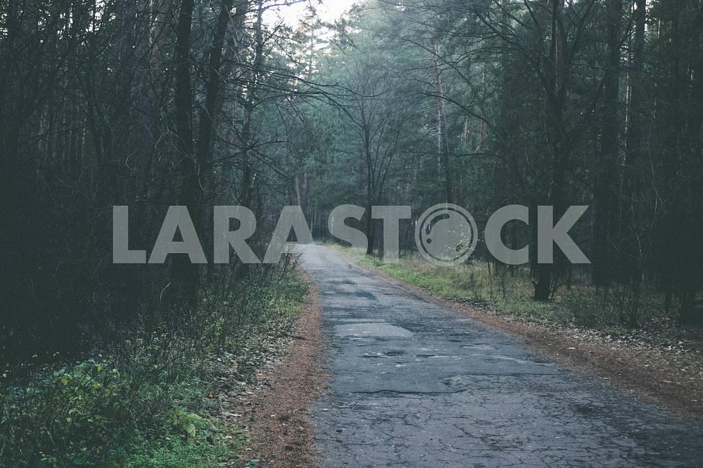 Road — Image 47954