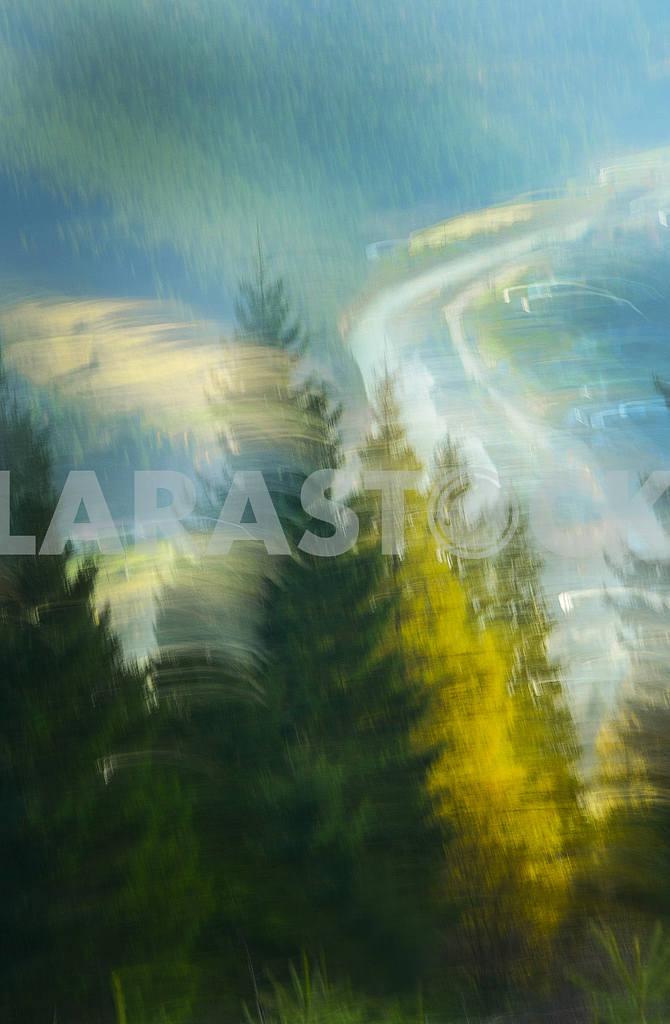 Trees — Image 48152