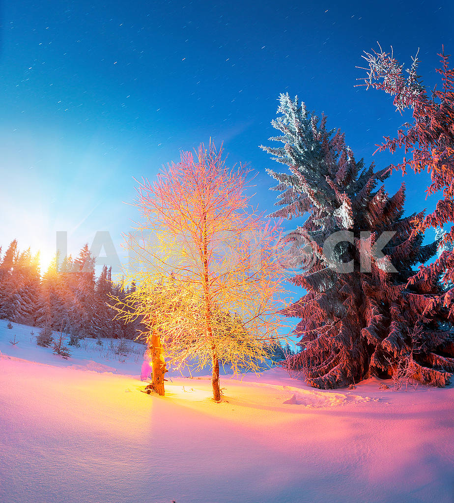 Houses shepherds night — Image 48335