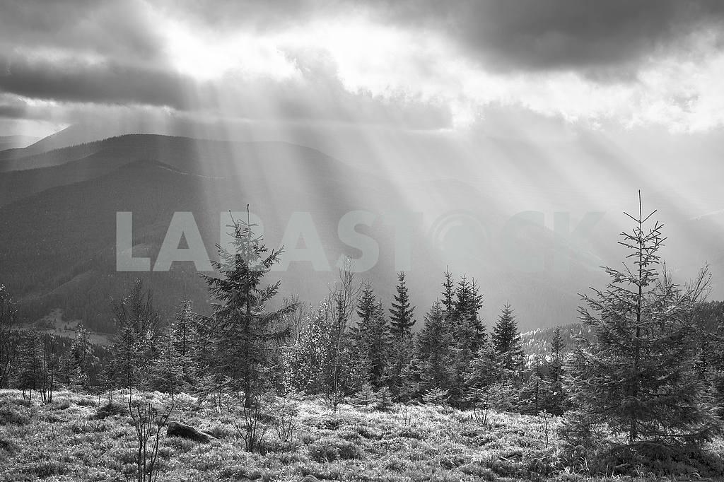 Houses shepherds night — Image 48468