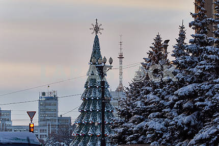 Christmas tree on Liberty Square in Kharkov