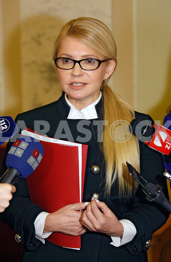 Yulia Tymoshenko,portrait in half growth — Image 48570