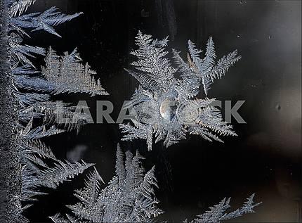 На темном фоне окна узоры, нарисованные морозом.