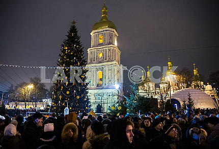 The New Year Tree lit at the Sophia Square