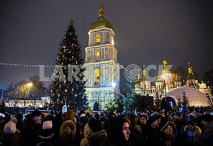 Новогодняя елка и колокольня Софийского собора
