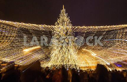 На Софийской площади зажгли Новогоднюю елку