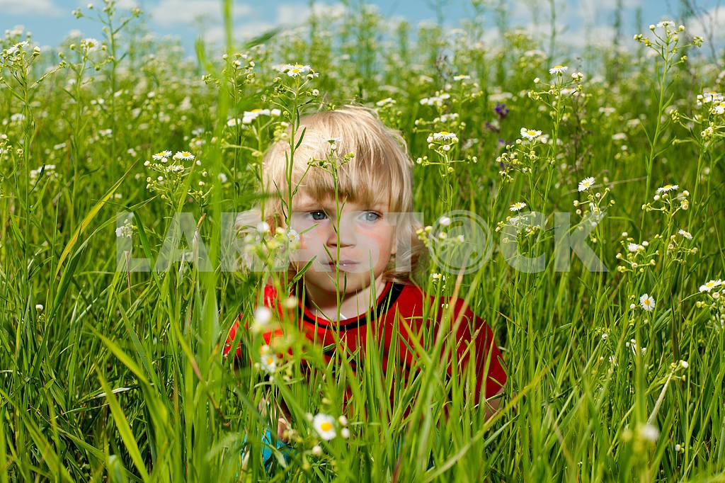 Boy enjoy on the meadow — Image 4942