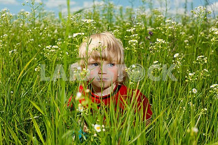 Boy enjoy on the meadow