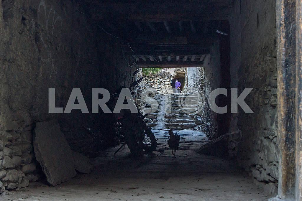 Walk-through yard — Image 49432