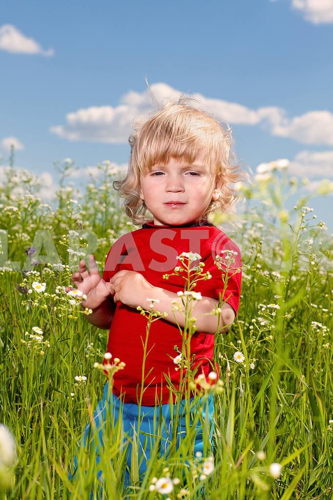 Little boy enjoy on meadow — Image 4944