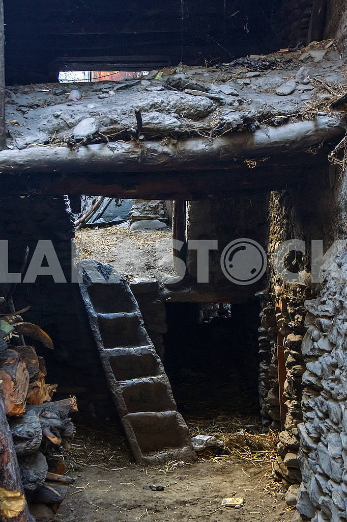 Staircase hollowed out of wood — Image 49544