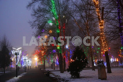 Alley in the park decorated with illumination