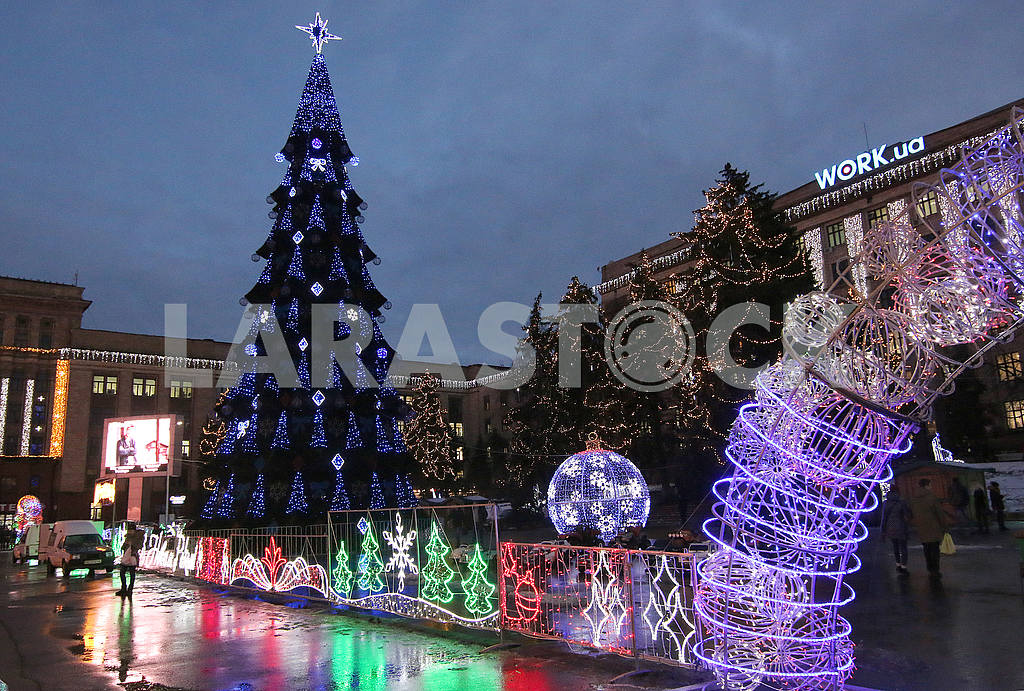 New Year tree in the Dnieper — Image 49618