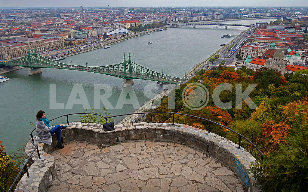 The Bridge of Freedom through the Danube — Image 49794